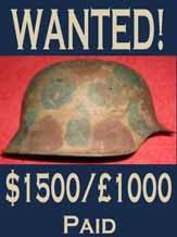 coastal artillery cammo helmet